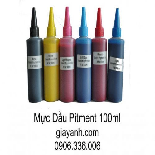 Mực in pigment UV 100ml